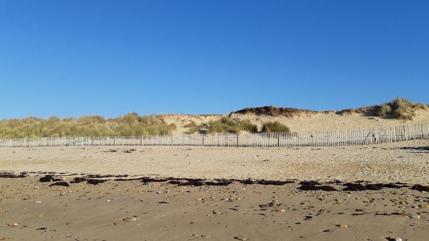 Des ganivelles ont été posées en haut de la plage de Saint Pierre à Locmariaquer dans le Morbihan