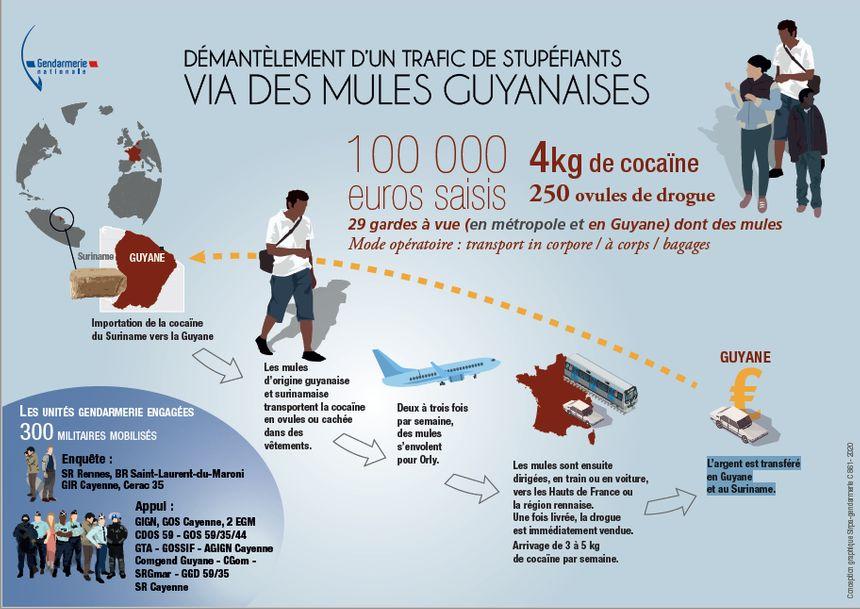 300 gendarmes ont été mobilisés pour démanteler ce réseau international