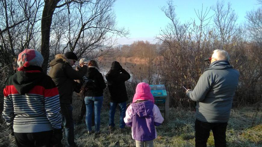 Un petit groupe de non-spécialistes s'est initié à l'observation des oiseaux à Pagny-sur-Moselle