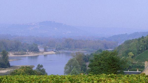 Un matin, au bord de la Loire brumeuse....