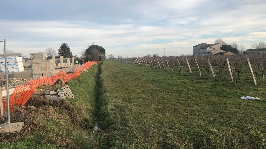 A gauche du fossé, la future école. A droite, la vigne jugée trop proche par son propriétaire lui-même.