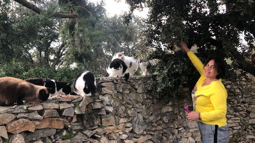 Au refuge Toutous et Minous à Nîmes, Gloria Feron, accueille en ce moment 75 chats