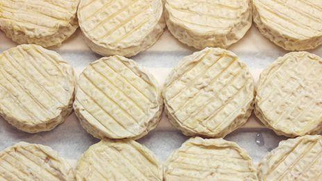 Deux recettes fromagères : Millefeuille de comté aux noix & Tarte fine au Frinault et épinards