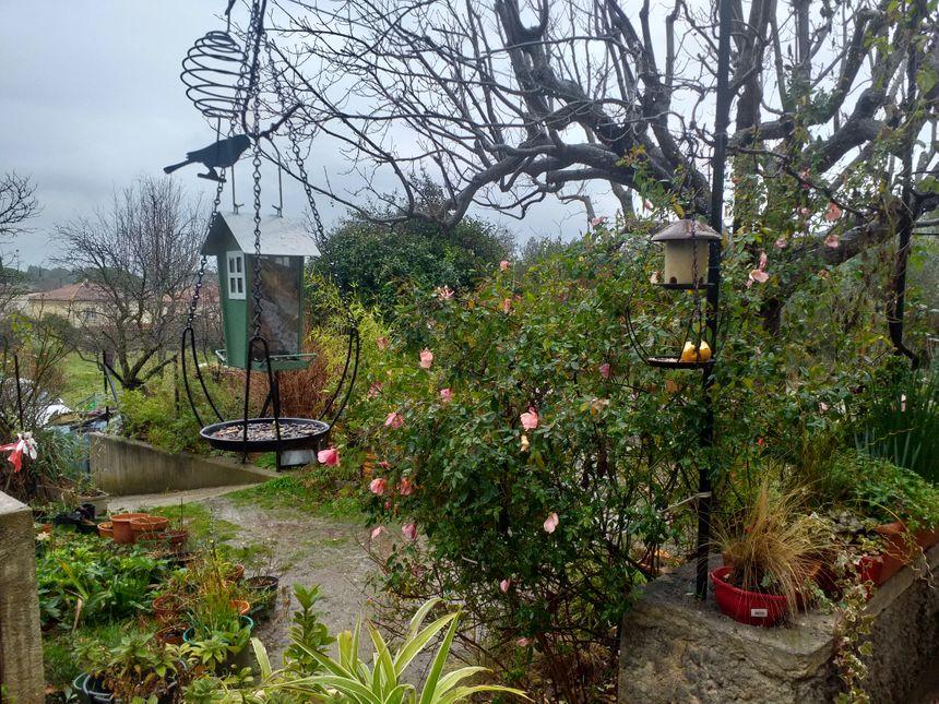 Le jardin de Mireille est un refuge LPO, il est parsemé de nichoirs pour les oiseaux.