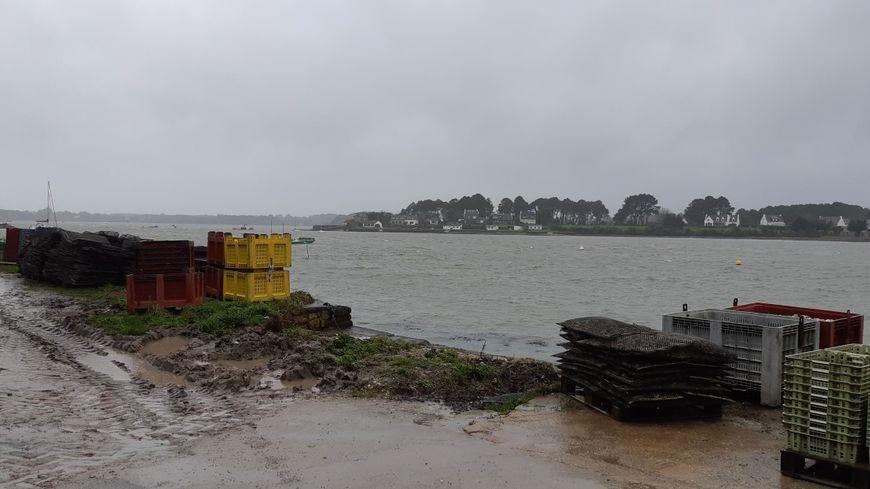 Plusieurs zones de production, comme la rivière d'Auray, sont contaminées