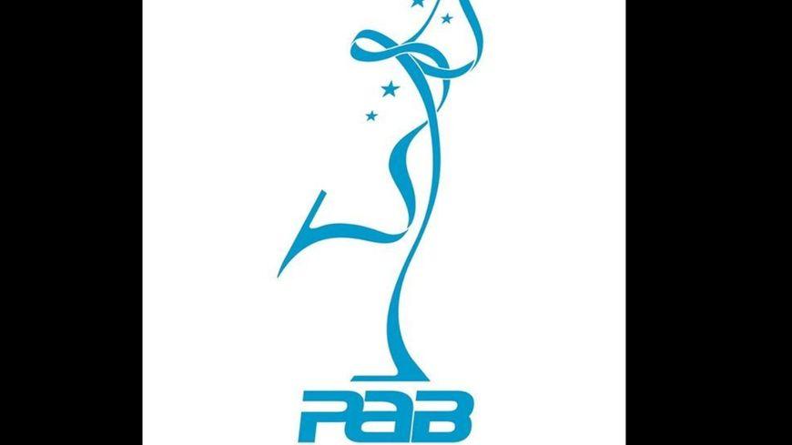 Logo Patinage Artistique Briviste