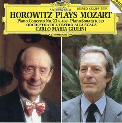 Concerto n°23 pour piano en La Maj K 488 :  2. Adagio - VLADIMIR HOROWITZ