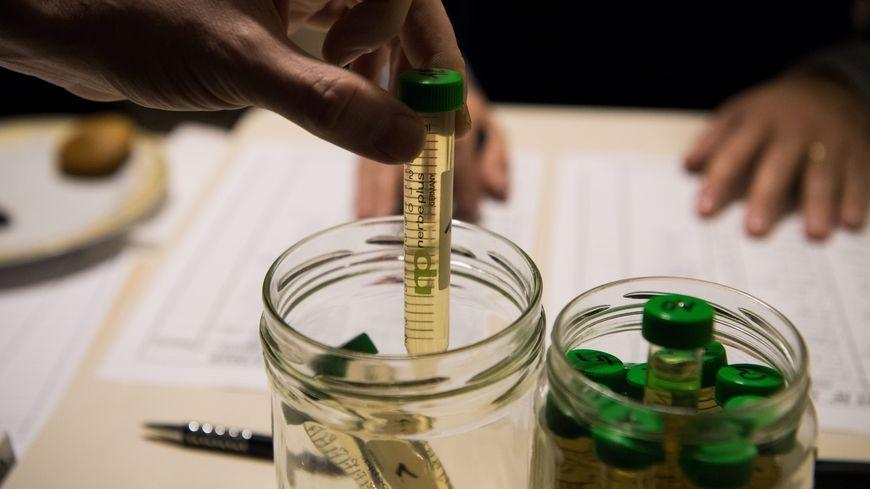 test d'urine en laboratoire. Image d'illustration.