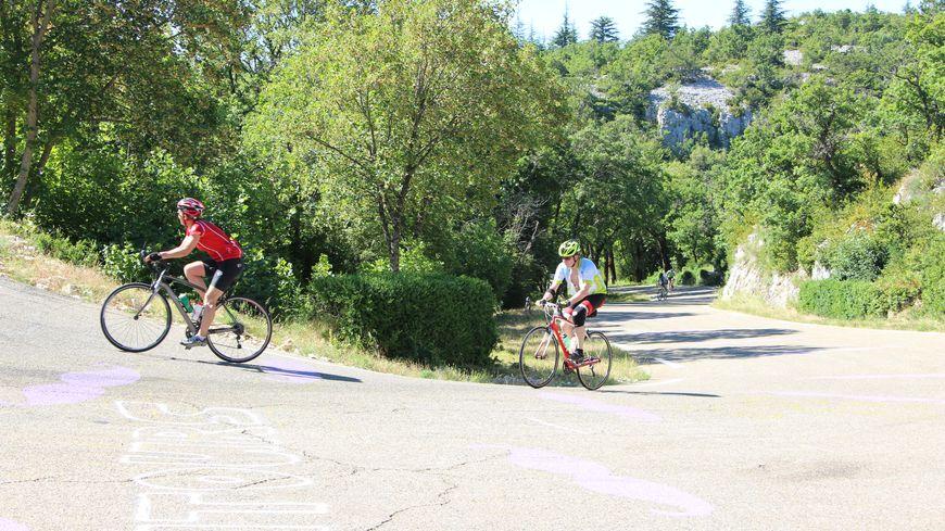 Des cyclistes dans le virage du bois dans la montée du Sud du Ventoux