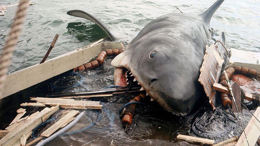 Jaws. Sur le tournage de Jaws, réalisé par Steven Spielberg.