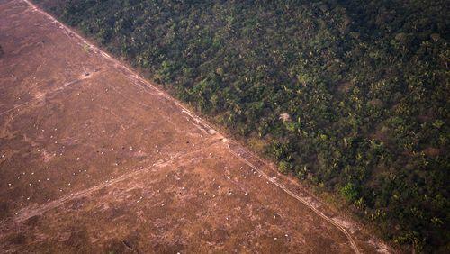 Épisode 5 : Amazonies