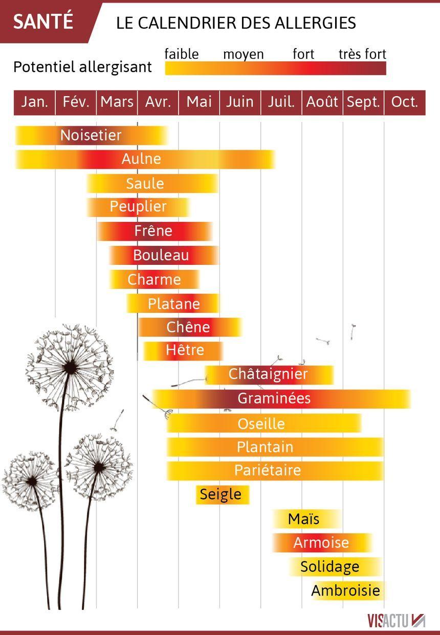 Calendrier Pollen 2021 CARTE   Allergies : les pollens sont (déjà) de retour, sept