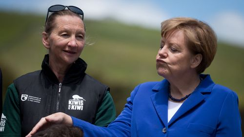"Angela Merkel, une ""Dame Teflon"" ?"