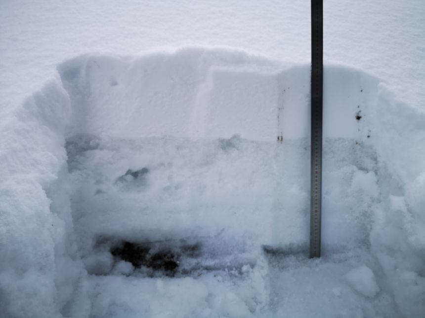 L'épaisseur de neige était de 61 cm le 5 février - Radio France