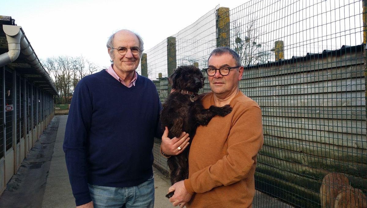 Municipales La Cause Animale Defendue Par Un Chien La Spa 53 Reagit