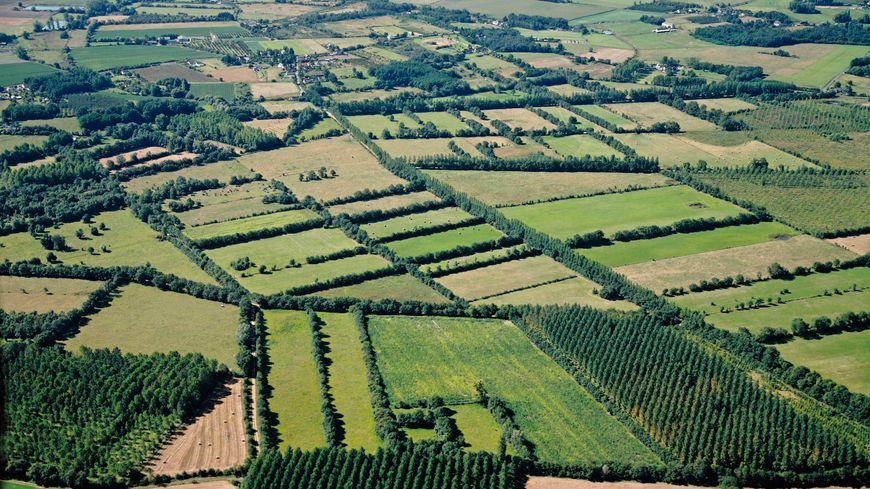 Seine-et-Marne : des agriculteurs récompensés pour leurs démarches expérimentales