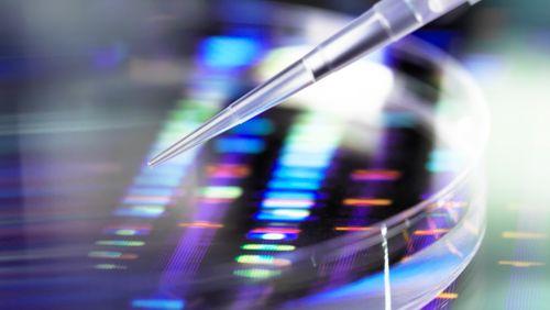 Une IA découvre l'un des antibiotiques les plus puissants au monde
