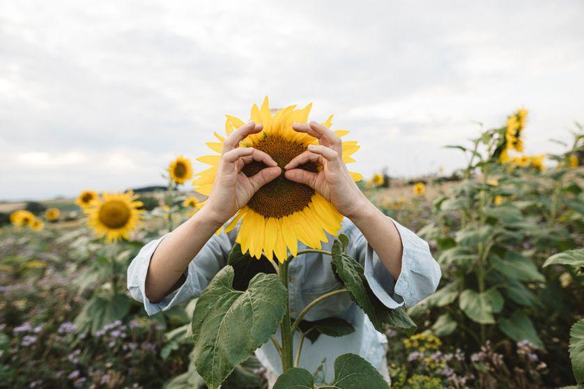 Le bonheur et ce qui donne du sens à la vie