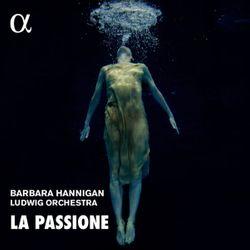 Symphonie en fa min hob i : 49 (La passione) : 1. Adagio