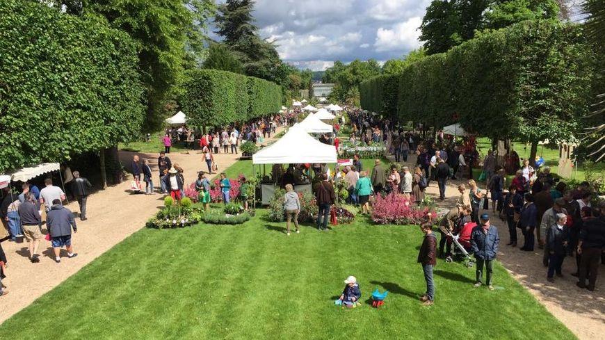 Coronavirus Le Festival Graines De Jardin 2020 Annule A Rouen