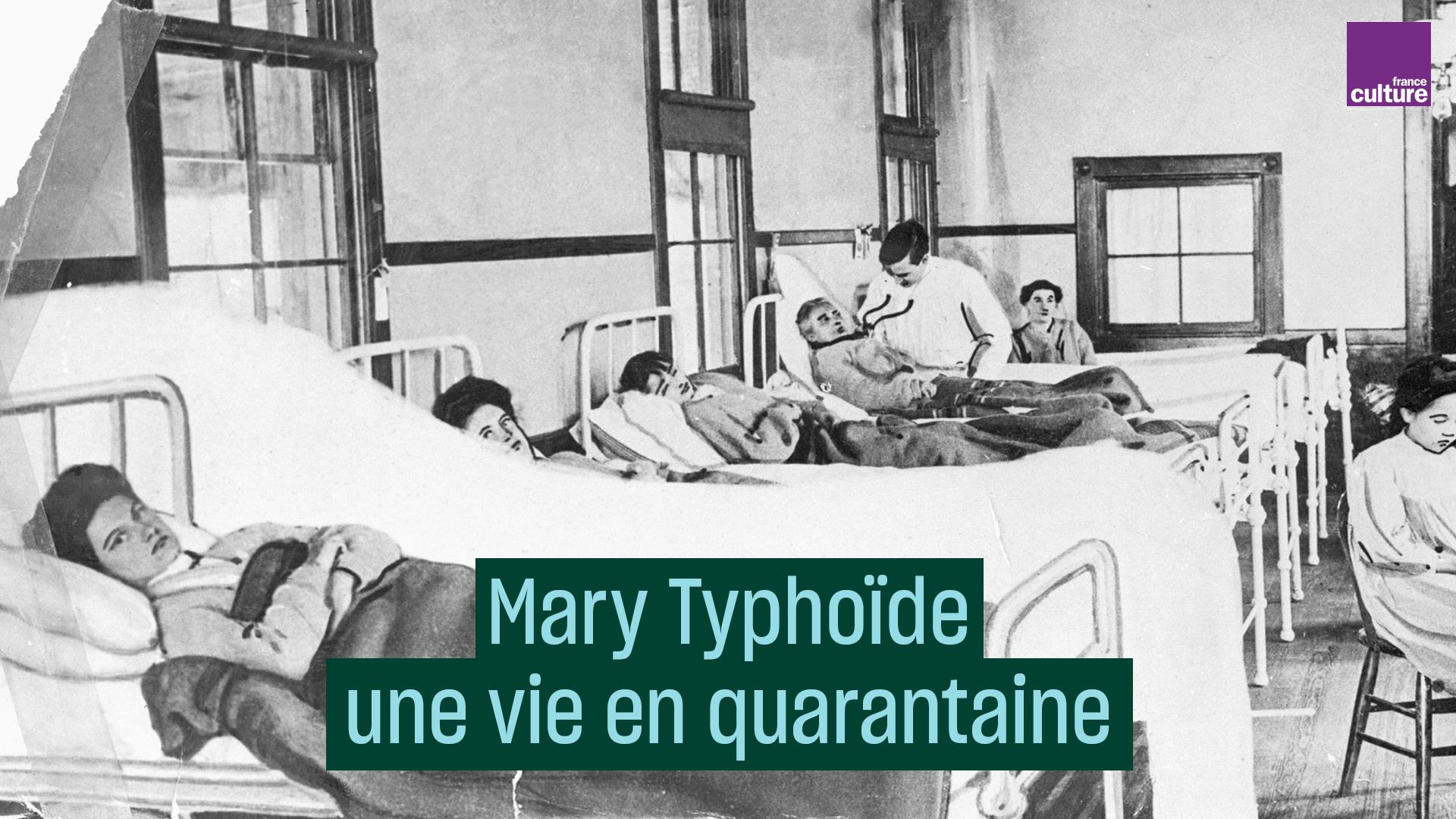 Mary Typhoïde : une vie en quarantaine
