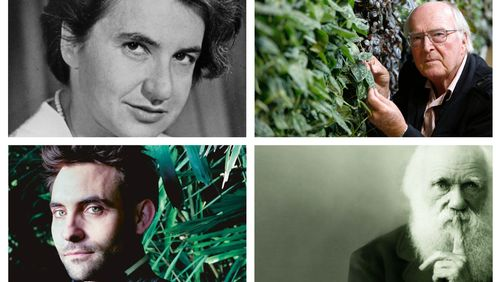 Portraits de 6 grandes figures en sciences naturelles