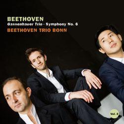 Symphonie n°6 en Fa Maj op 68 (Pastorale) : 5. Hirtengesang. Frohe und dankbare Gefühle nach dem Sturm - arrangement pour trio avec piano - MIKHAIL OVRUTSKY