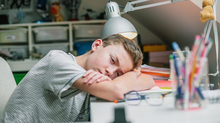 De la difficulté d'apprendre seul : pourquoi la classe manque-t-elle tant aux élèves ?