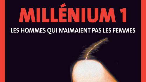 """""""Millenium 1 - Les hommes qui n'aimaient pas les femmes"""" de Stieg Larsson (5/15) : La prison"""