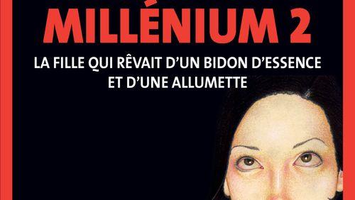 """""""Millenium 2 - La Fille qui rêvait d'un bidon d'essence et d'une allumette"""" de Stieg Larsson (10/15) : Police secrète"""