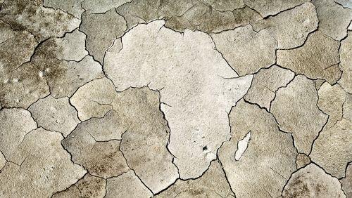 L'Afrique est-elle un laboratoire du monde de demain ?