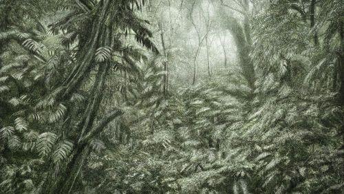 Art : dessine-moi le monde d'après (5/5) : Vitali/Vasconcellos : foules sentimentales, nature idéale