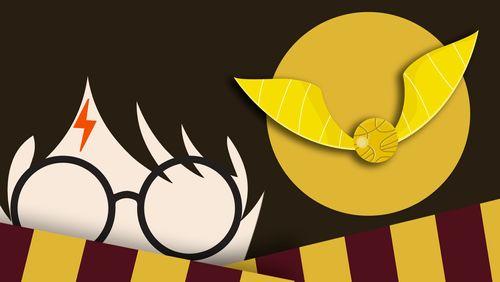 """Chapitres 11 et 12 : """"Le match de Quidditch"""" et """"Le Miroir du Riséd"""""""