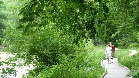 Des parcs et jardin de Loiret... il y en a plein a découvrir !