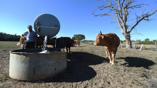 Sécheresse : comment l'agriculture peut-elle s'adapter ?