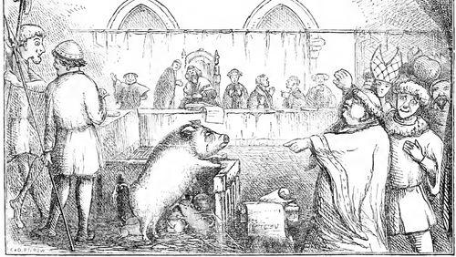 Accusé porc, levez-vous !