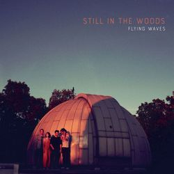 Flying waves - STILL IN THE WOODS