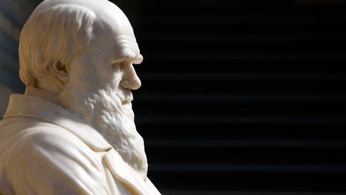 Épisode 2 : L'invention du racisme : la faute à Gobineau et pas à Darwin ?
