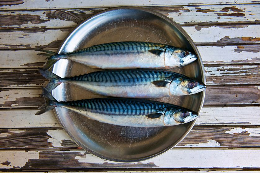 Peut-on encore manger du (bon) poisson ?