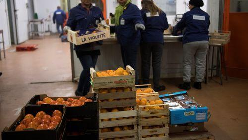 Comment garantir le droit à bien manger ?