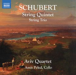 Quintette à cordes en Ut Maj op posth 163 D 956 : 3. Scherzo. Presto - SERGEY OSTROVSKY