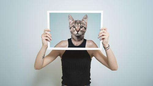 Les animaux et nous, histoire d'une relation (4/4) : Animal studies, ce que les animaux disent de nous