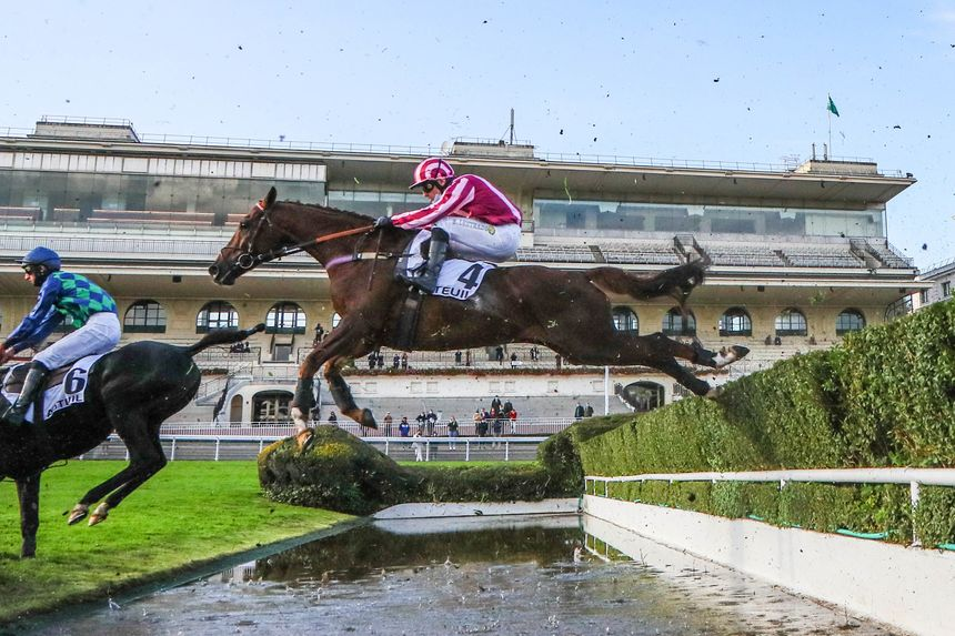 Le cheval Docteur de Ballon et son jockey Bertrand Lestrade