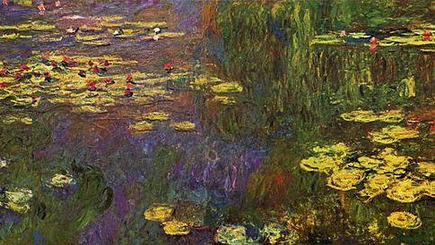 Monet et l'origine des plantes à fleurs