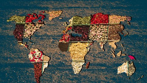 Planète alimentation : traditions et désordres