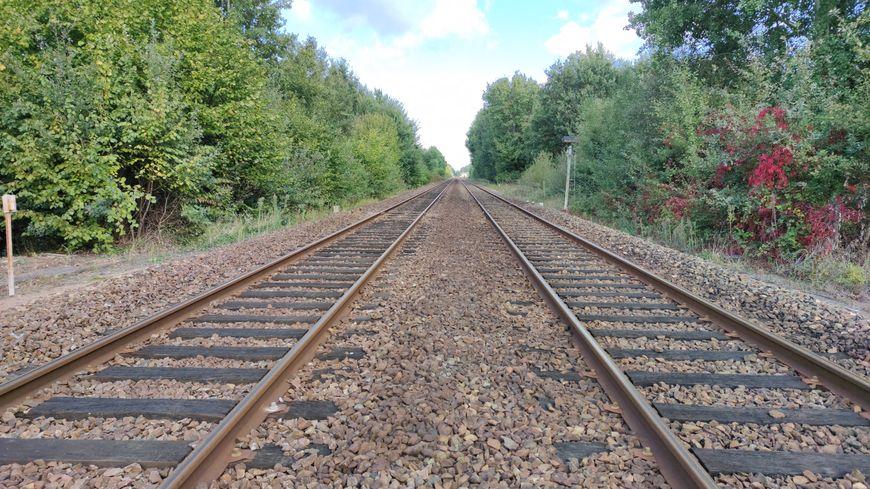 Jusqu'à 1 h 30 de retard sur des trains entre Paris et Orléans après une panne électrique à Austerlitz