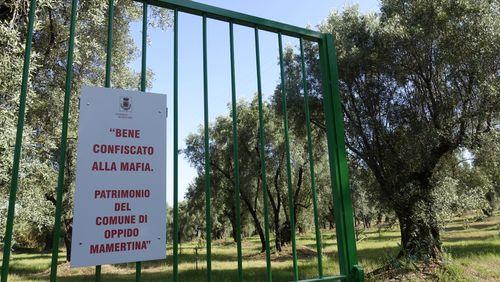 En Calabre sur les terres de l'anti-mafia