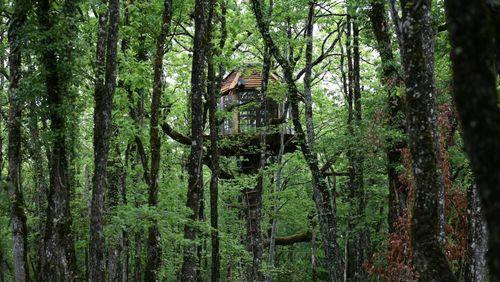 Nous et les autres (4/4) : Retraite ou confinement, s'élever par les arbres