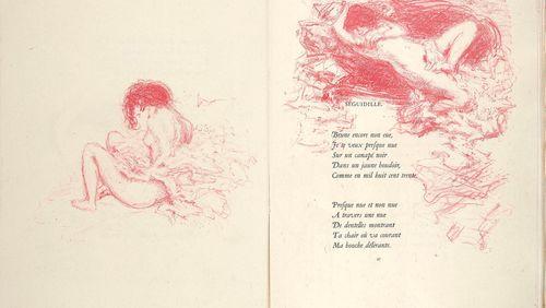 Verlaine et le poète maudit