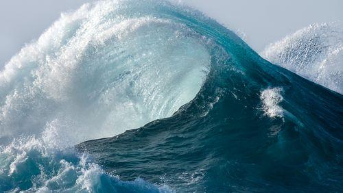 Une course contre la montre pour la sauvegarde de l'océan ?